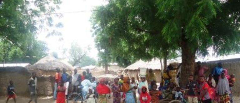 Article : Moulvoudaye : la solution vient du Nyébé